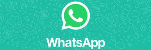 Sua pizzaria já está atendendo pelo WhatsApp?